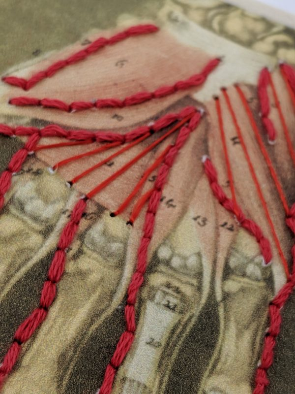 Embroidery art on medical drawing, red thread on illustration of hand anatomy