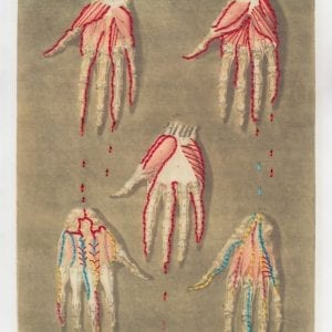 Embroidery art on medical drawing, red and multicolored thread on illustration of hand anatomy