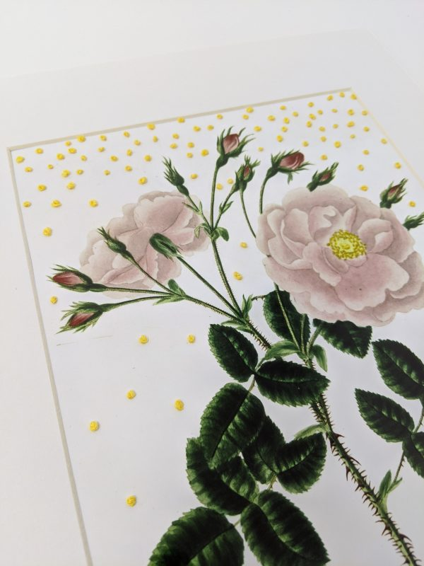 Embroidery art, yellow French knots on photo of pink flowers