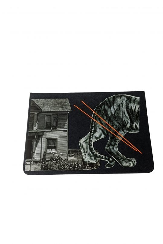 Tiger collage in front of house on black notebook with neon thread